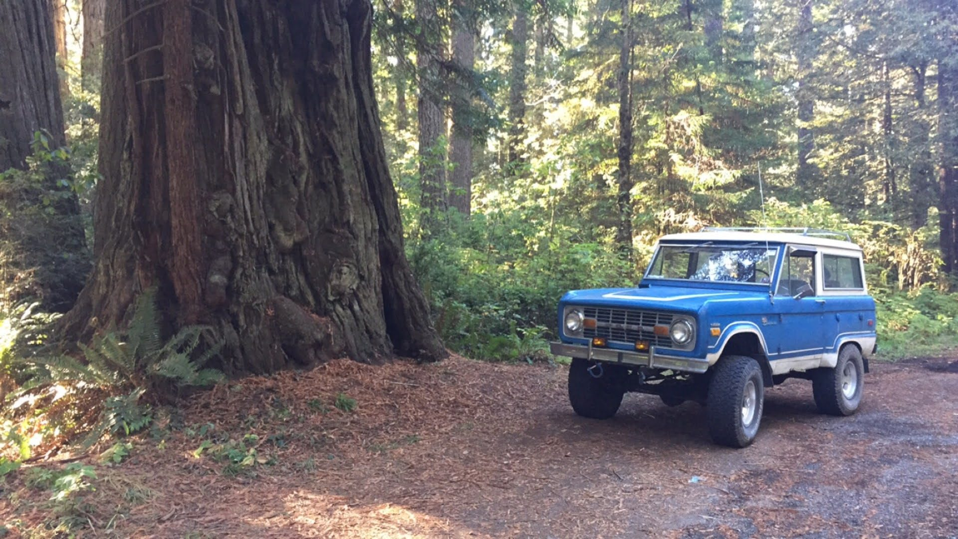 1971 Bronco Red Wood California