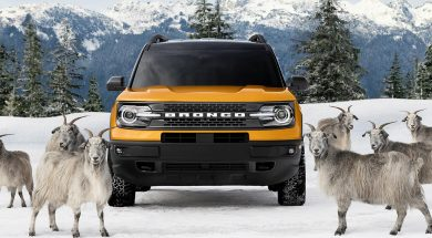 ford-bronco-header-raised-by-goats