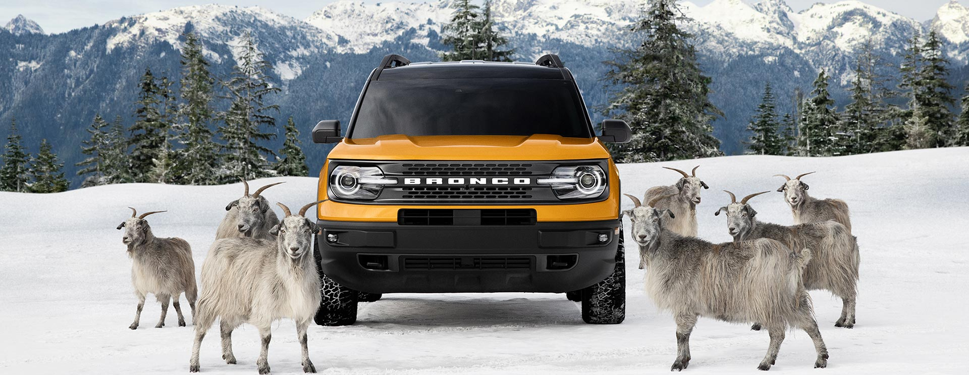Bronco Sport: Raised by Goats